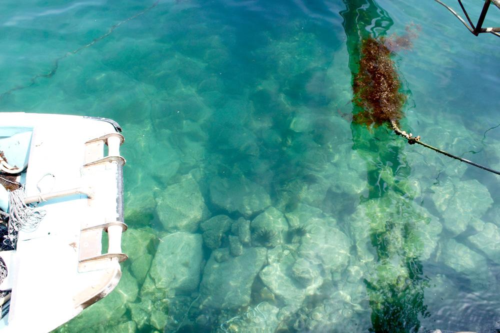 人と自然にやさしいエシカルなあこやパール(真珠)の養殖場の海。エメラルドグリーン