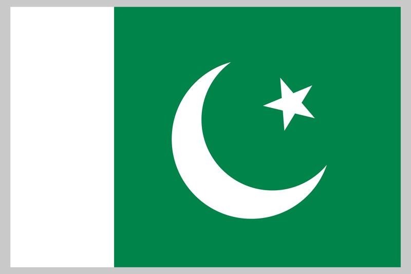 パキスタン起業物語(パキスタン国旗)