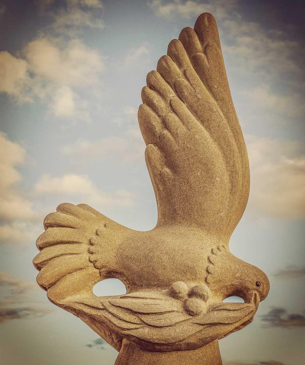 ノアの箱舟:鳩とオリーブ