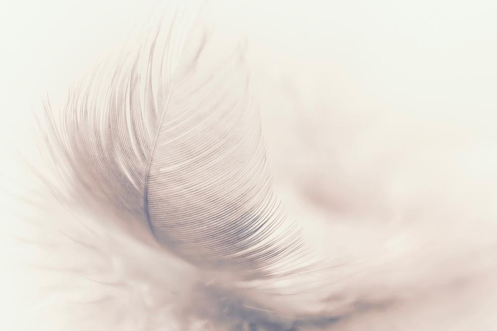羽根模様が美しいデザイン〔結婚指輪〕