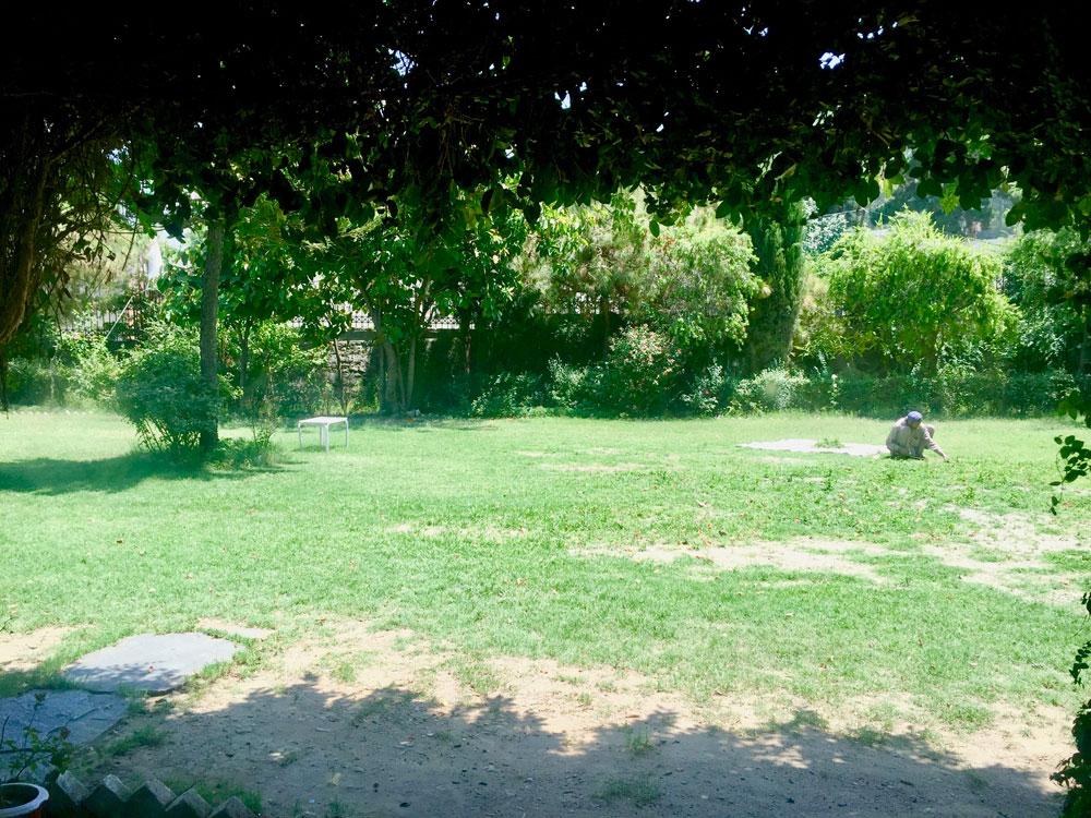 PTDC ホテル サイドシャリフ @スワート のお庭